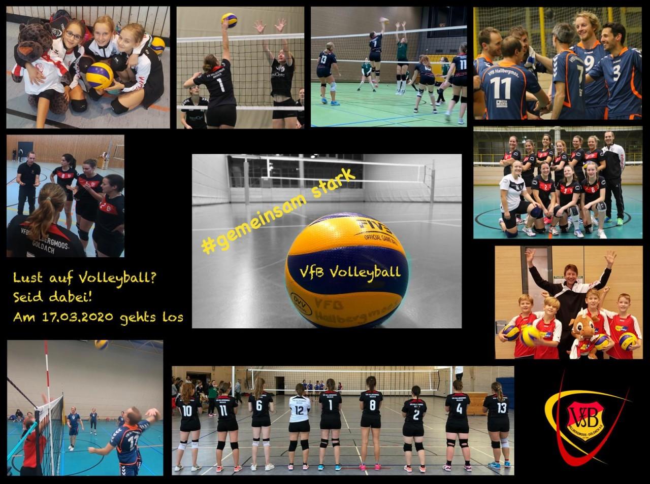 Nach der Saison ist vor der Saison - Volleyballabteilung startet in Vorbereitungsphase